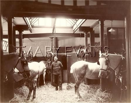 Red Cross Street Station Stables c1900, London Fire Brigade..jpg