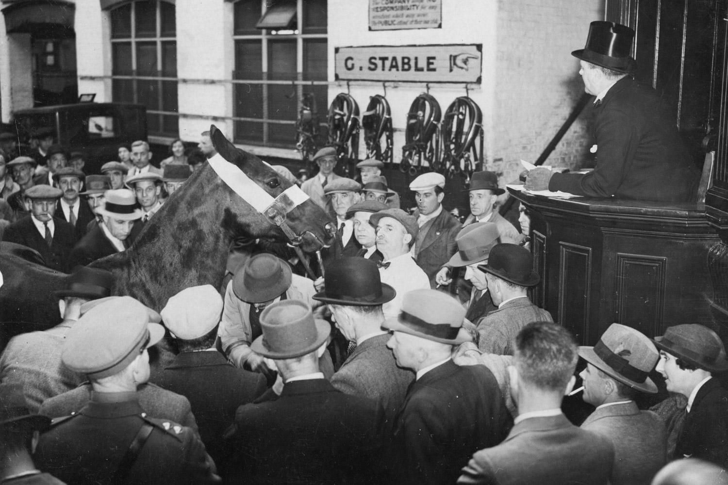 New Kent Road 1937, an auction of army horses in progress at the Elephant and Castle Horse Repository. at 16-18 New Kent Road, where the shopping centre stands today..jpg