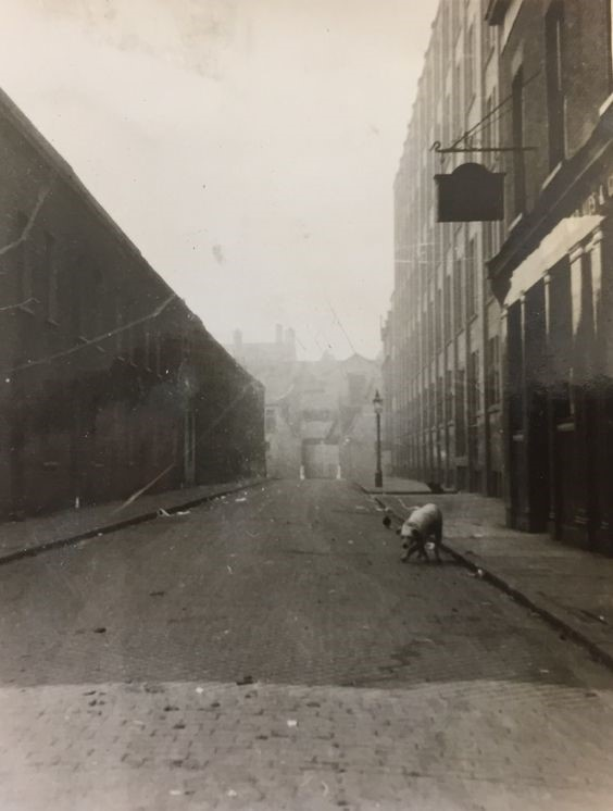 Alice Street looking from Rothsay Street with Jolly Tanners Pub on the corner.jpg