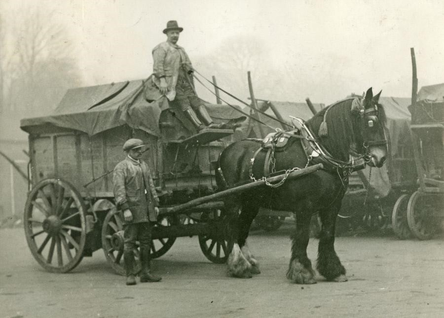 Camberwell Borough Council,the last horse, March 1933.jpg