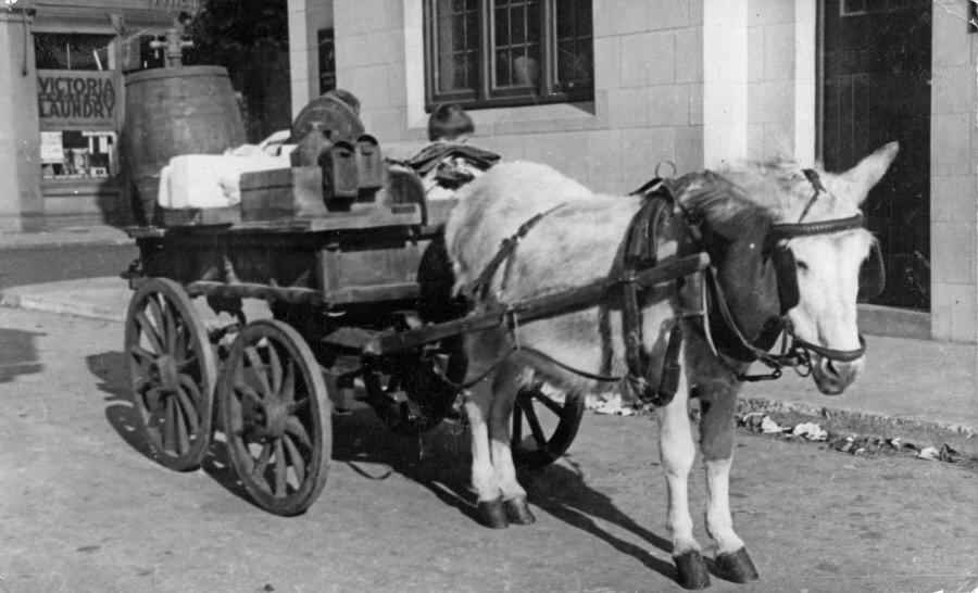 St James' Road,1939. Vinegar and salt seller's donkey barrow outside the 'Gregorian Arms' public house, St James' Road. X.jpg