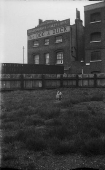 Dog and Duck 1931.jpg