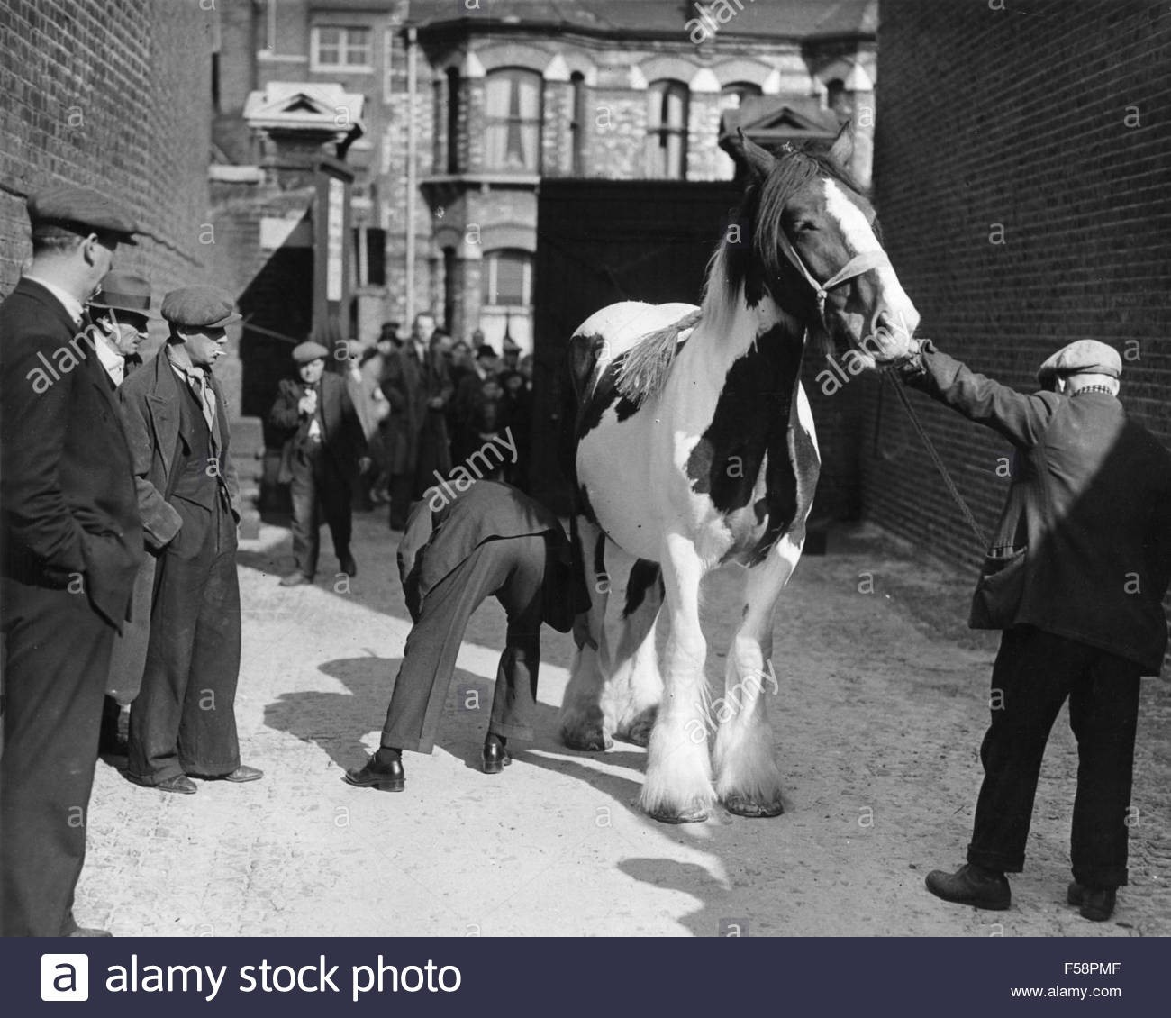 Elephant and Castle, Horse Auction about 1947.jpg