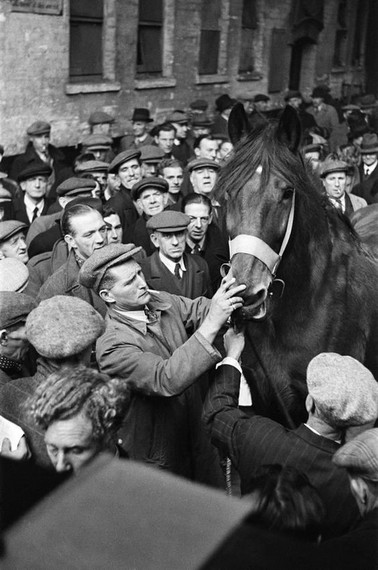 Horse Auction,New Kent Road,c1947..jpg