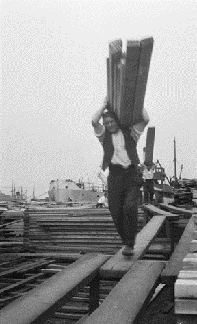 Surrey Docks, Timber porters carrying deals along gang planks suspended over stacks, on 3td July 1929.  X.png